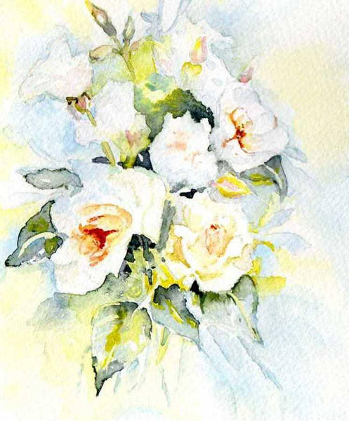 Roses_blanches.jpg